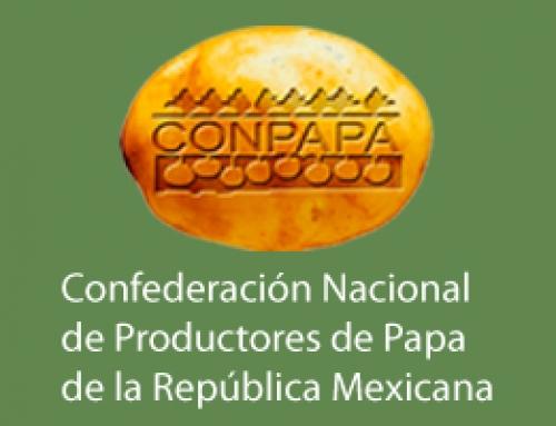 Participación: Congreso Nacional de la Papa